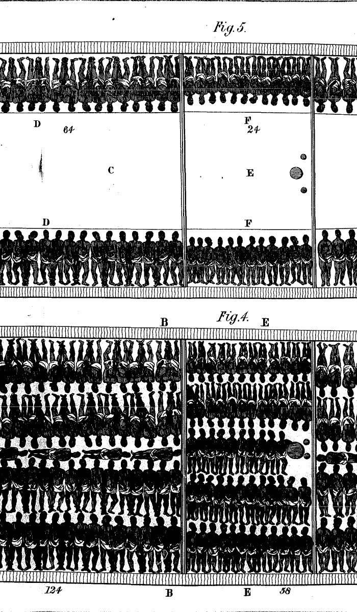 Inhuman Housing of Slaves Aboard Slave Ships Middle Passage Ship