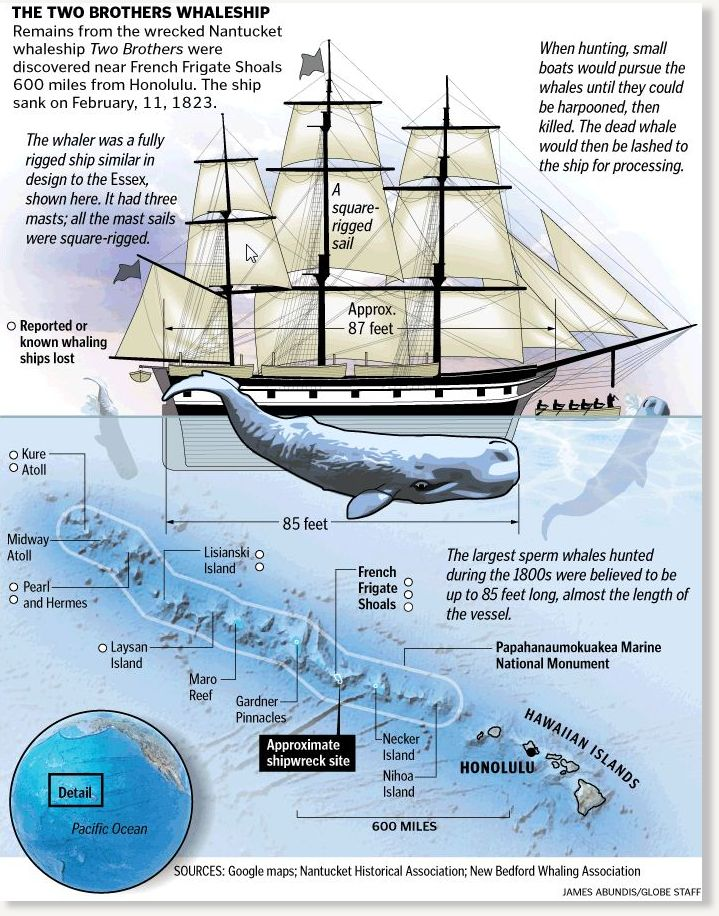 whaleship essex The whaler essex was indeed sunk by a whale—and that's only the beginning.