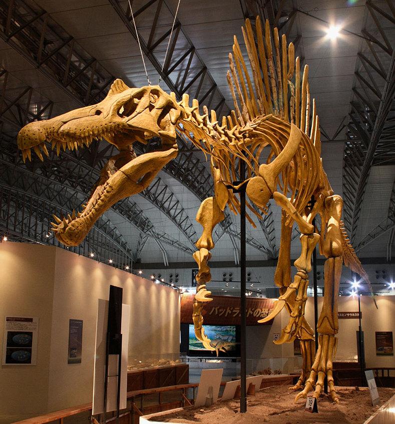 Dinosaurs Era Jurassic Park - SPINOS...