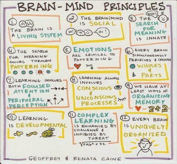 brain science 12 brain mind principles used in teaching learning