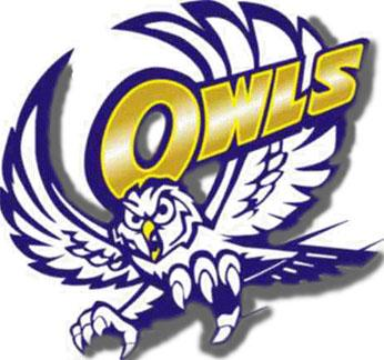 The Reagon County Owls Sports Visual Arts