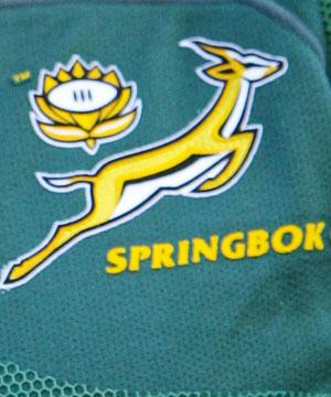 Springboks - Basis of Name Social Studies Sports