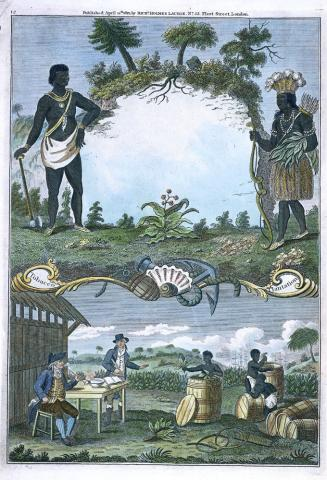 PLANTATION LIFE (Illustration) American History Biographies African American History Civil Rights Law and Politics Nineteenth Century Life Social Studies Tragedies and Triumphs Slaves and Slave Owners