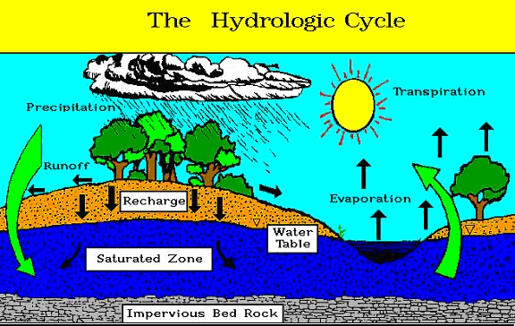 This graphic depicts the water (hydrological) cycle.