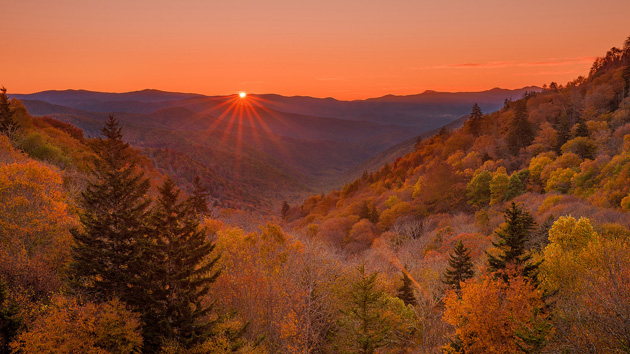 the american wilderness The opening battle of lieutenant general ulysses s grant's sustained offensive against general robert e lee's army of northern virginia, known as the overland campaign, was fought in an area of dense wooded undergrowth known locally as the wilderness.