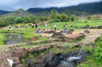 Traditional irrigation solutions by PLACES students at Ka'ala Farms