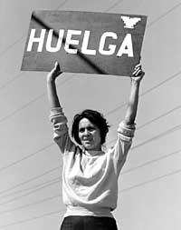 Delores Huerta American History Social Studies Civil Rights