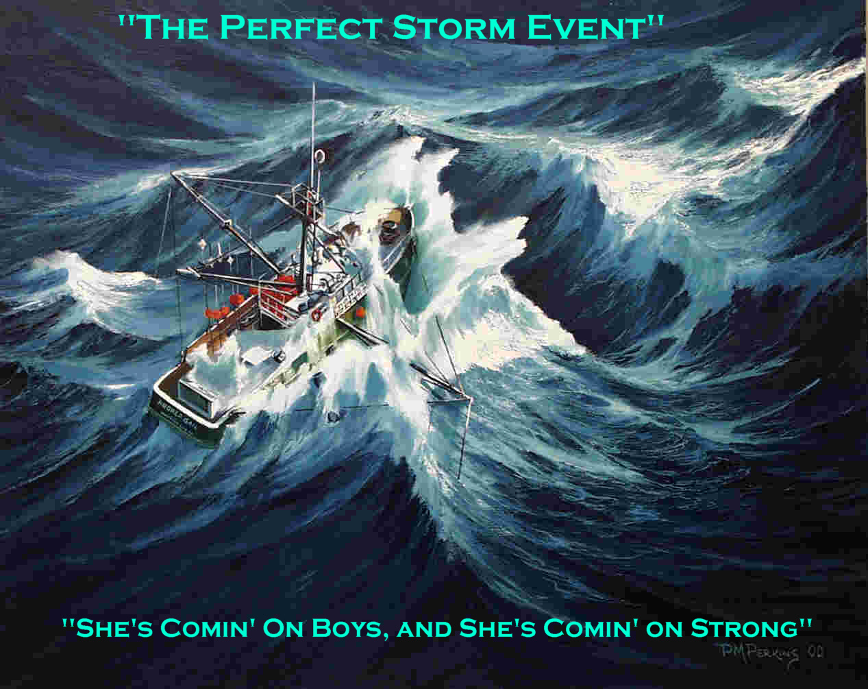 the perfect storm summary The experience of being caught at sea in the maw of a perfect'' storm (that is, one formed of an almost unique combination of factors), a monstrous tempest that.