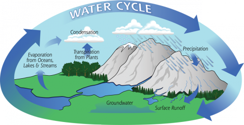 The Hydrologic Cycle STEM