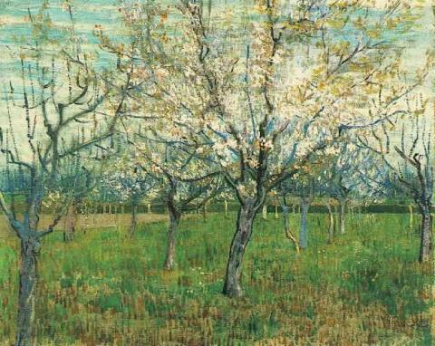 Orchard with Blossoming Apricot Trees Social Studies Tragedies and Triumphs Nineteenth Century Life Visual Arts