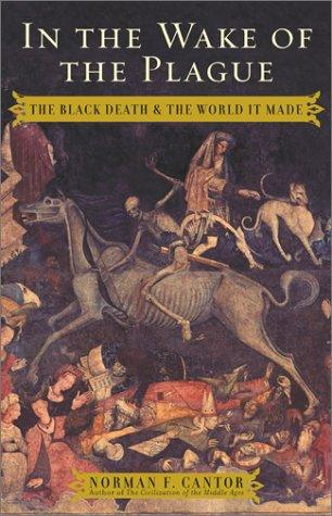 In the Wake of the Plague Medicine Medieval Times World History Disasters