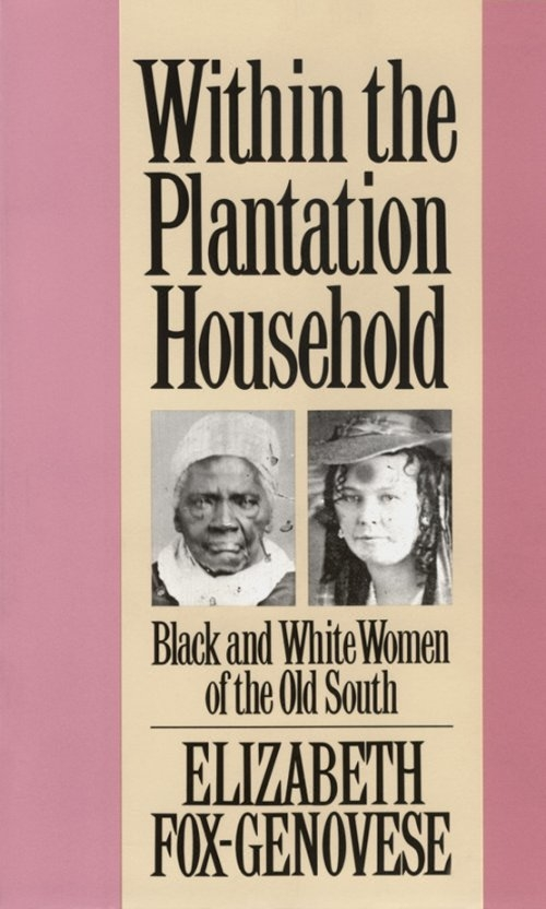 the challenges of a black family on a slave plantation in the nineteenth century The slave owner's exploitation of the black woman's sexuality was one of the most significant factors differentiating the  in the nineteenth century,.