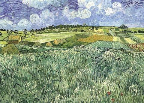 van Gogh Painting - Plain Near Auvers Biographies Famous People Geography History Social Studies Visual Arts Nineteenth Century Life