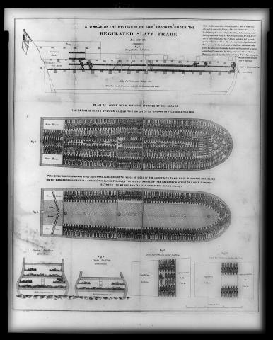 Slave Ship Brookes - Legal Layout of Slave Stowage Civil Rights Famous Historical Events History Law and Politics Slaves and Slave Owners Social Studies World History Visual Arts