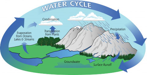 Hydrologic Cycle Geography STEM