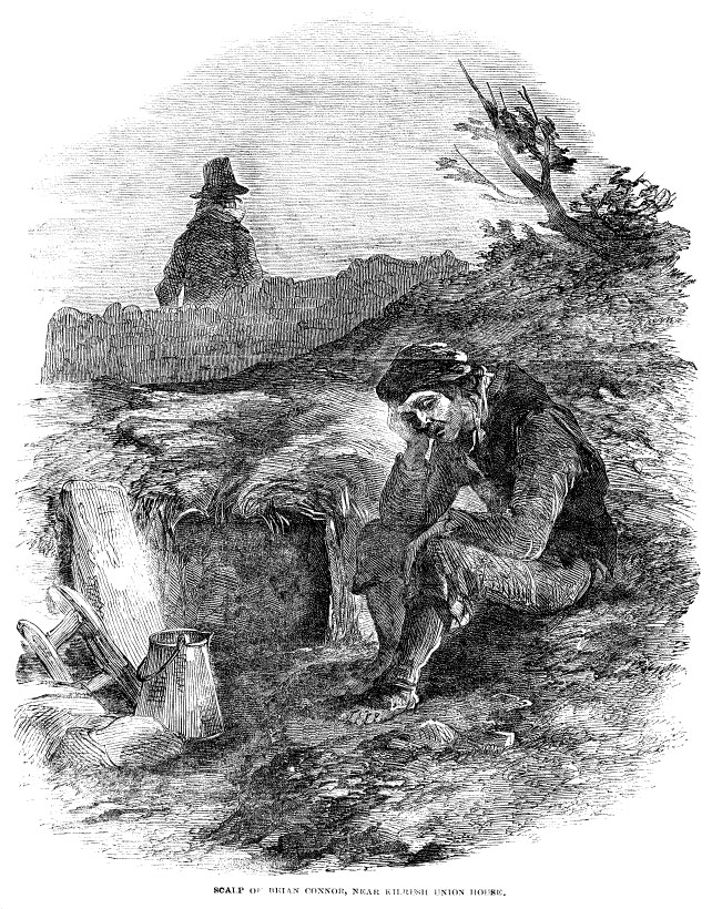 great potato famine research paper More than 1 million people died of starvation and disease during the irish potato famine (also known as the great research to understand how paper obviously.