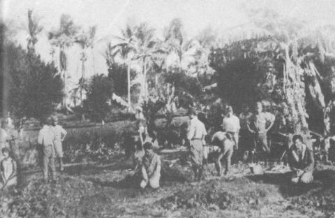 Japanese Occupation - Filipinos Dig Their Own Graves Famous Historical Events Social Studies World History World War II Tragedies and Triumphs