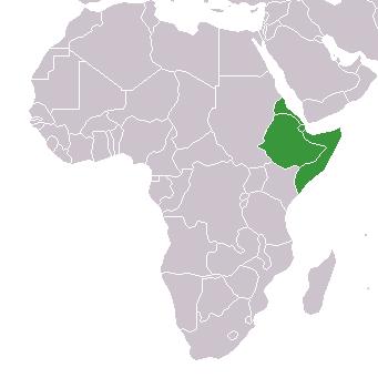 Worksheet. Horn of Africa  Map