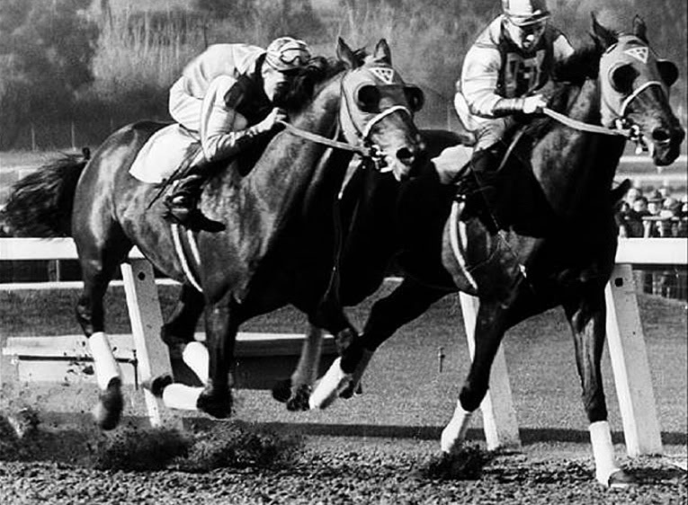 Seabiscuit won the Santa Anita Handicap, in 1940, with Red Pollard up. In this scene we see the Biscuit with Kayak II (also owned by the Howard family). Image online, courtesy Seabiscuit Heritage Foundation. PD