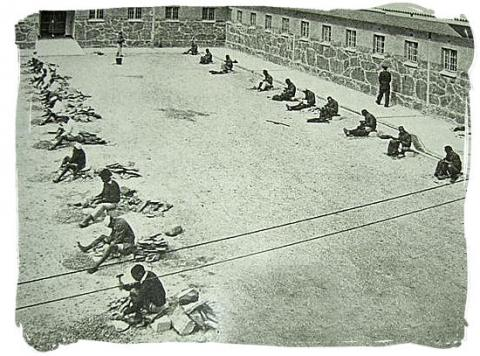 Robben Island Prisoners - Stone Pounders Crimes and Criminals Social Studies Tragedies and Triumphs