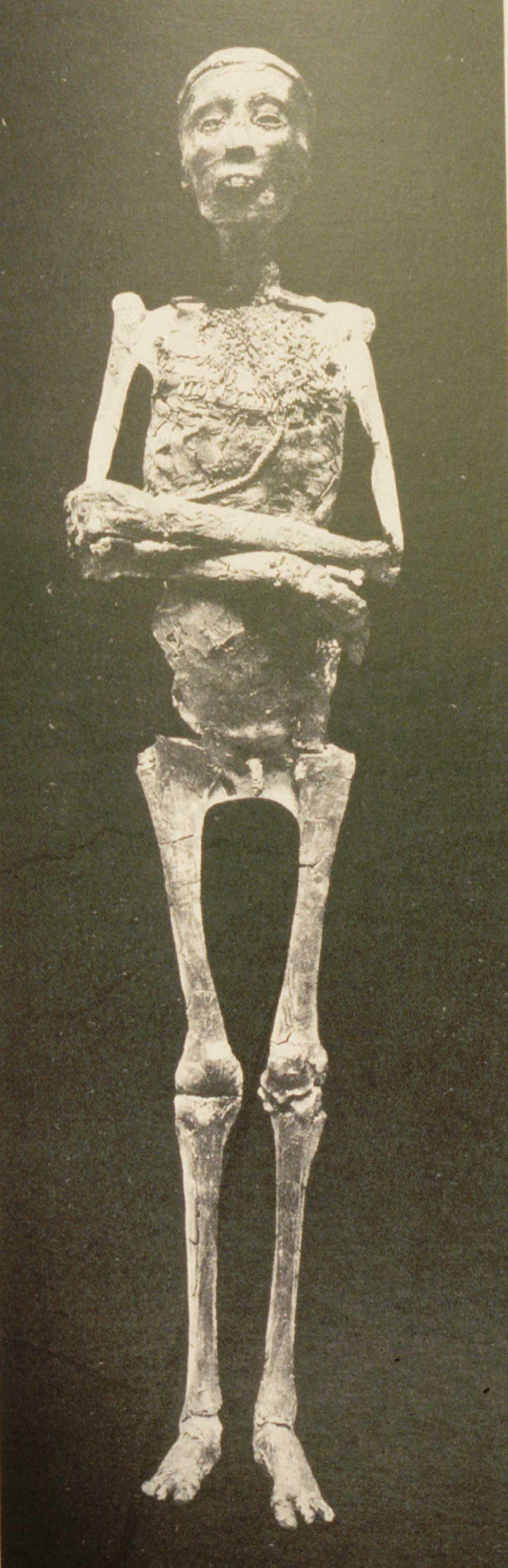 King Tut - Mummy
