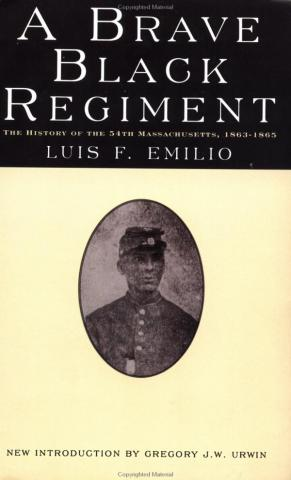 A Brave Black Regiment - by Luis F. Emilio Biographies African American History Civil Wars American History