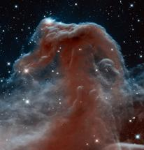 Horsehead Nebula, in Infrared Light, from Hubble