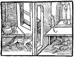 ANIMALS as DEFENDANTS - RATS (Illustration) World History Medieval Times Trials Geography Social Studies