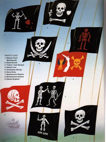 Pirate Flags Visual Arts World History