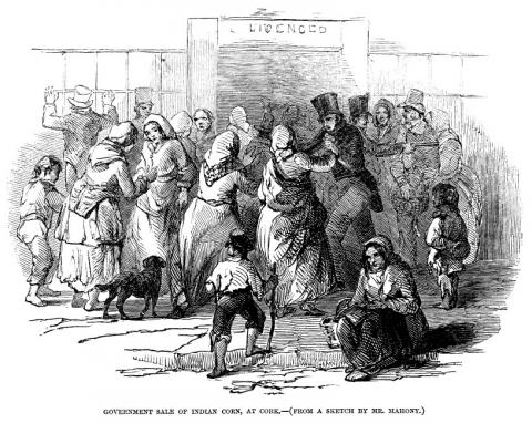 term paper irish famine The great famine irish an gorta m r or the great hunger was a period of mass starvation, disease, and emigration in ireland between 1845 and 1852 1 it is.