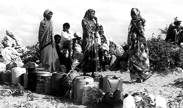 somalia history Drought, civil war and anarchy  africa's worst drought of the century occurred in 1992, and, coupled with the devastation of civil war, somalia was plunged into a severe famine that killed 300,000.
