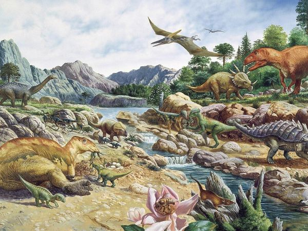 Jurassic period plants and animals - photo#28