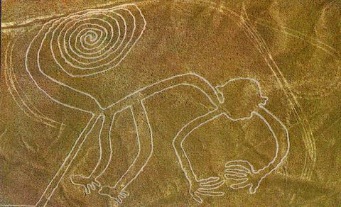 Nazca Geoglyph - The Monkey Geography History Social Studies STEM Visual Arts
