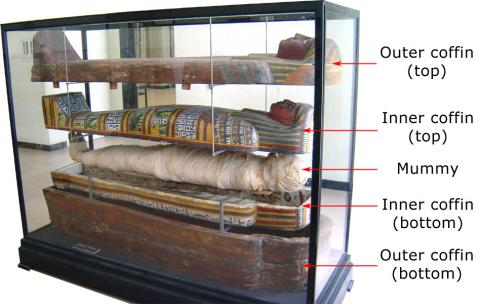 Egyptian Mummy With Inner and Outer Coffin