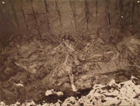 Tollund Man in the Bog (Illustration) STEM Social Studies Archeological Wonders Geography Ancient Places and/or Civilizations