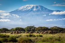 Things to Know about Kilimanjaro