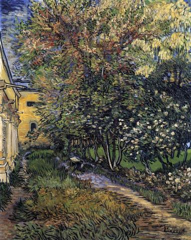 VINCENT at SAINT-REMY (Illustration) Biographies Famous People Geography Social Studies Tragedies and Triumphs Visual Arts Nineteenth Century Life